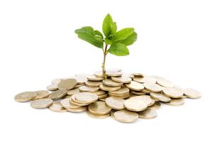 Investing tree